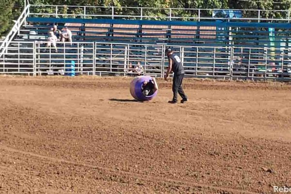 Rebel Rally Rodeo